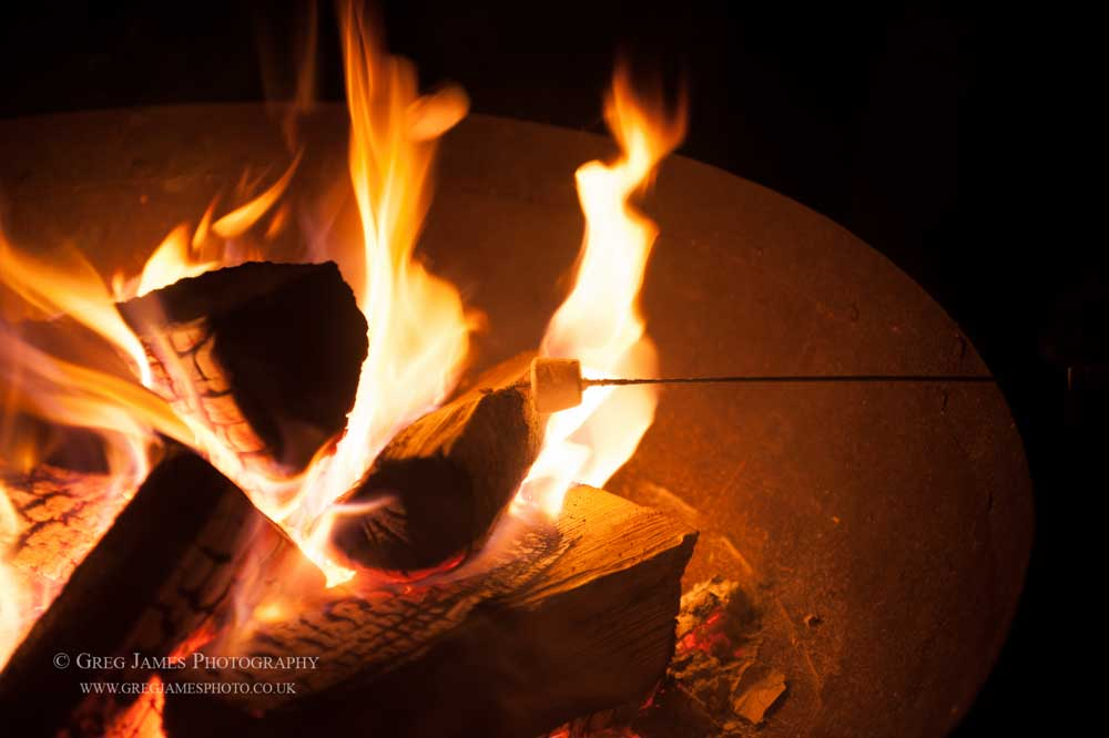 Image of marshmallow being toasted in a large fire-pit