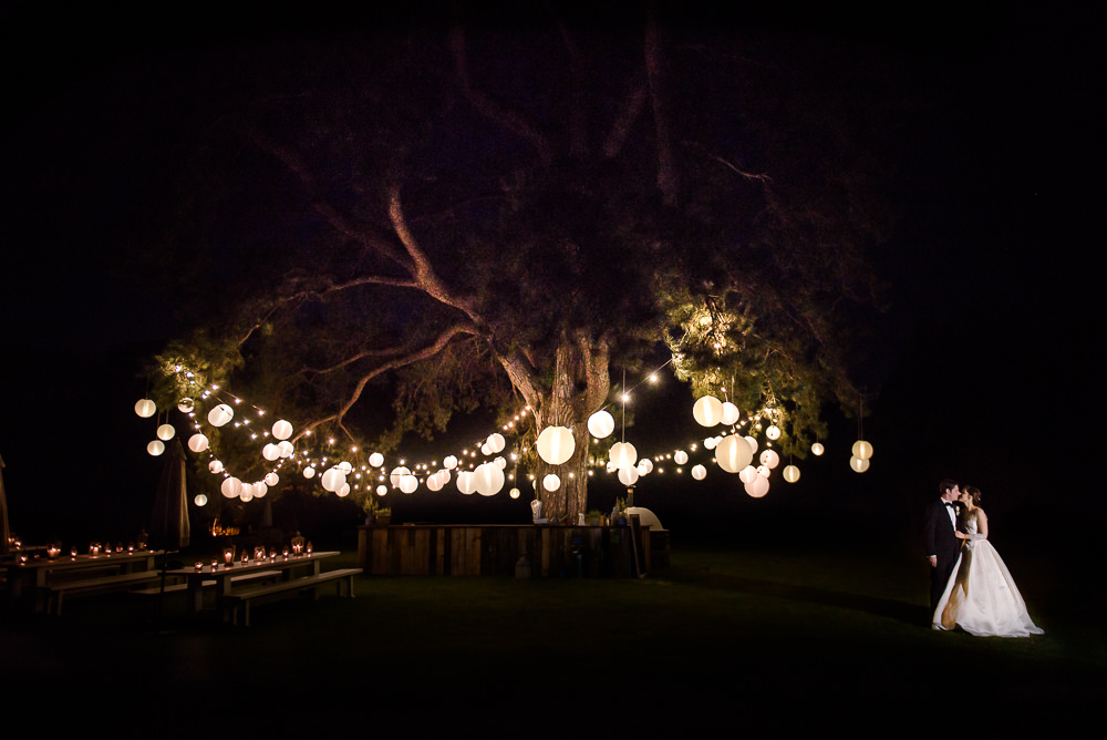 Image of a large tree with white lighting and round shades with a bride and groom embracing underneath