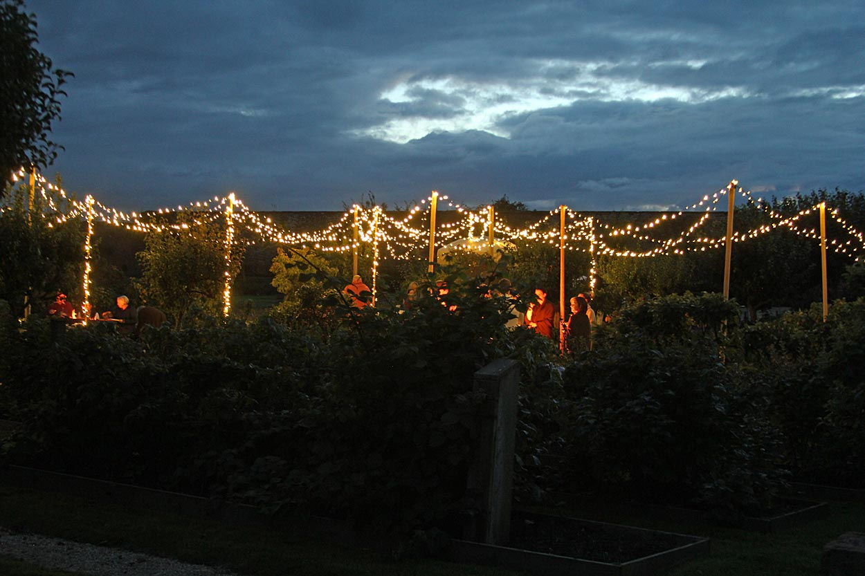 Image of a lighting canopy.