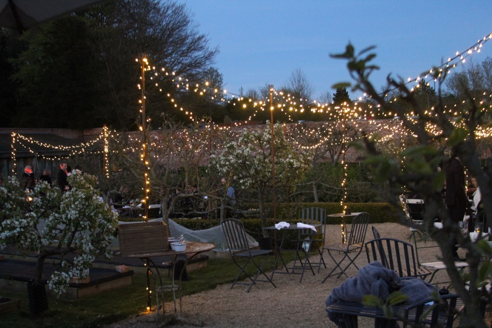 Garden Canopy of Lights